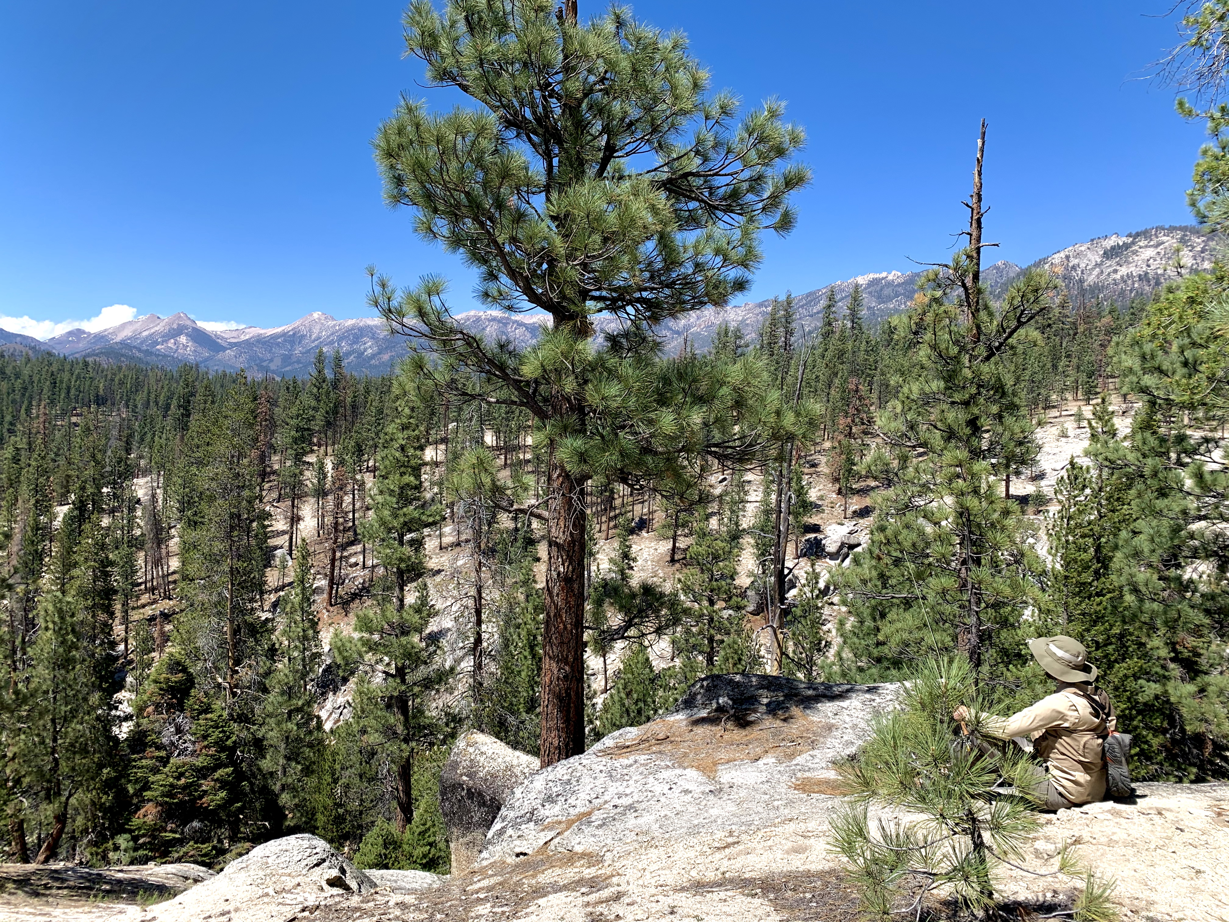 Catch the Hatch: Adventure in the Golden Trout Wilderness (pt.1)